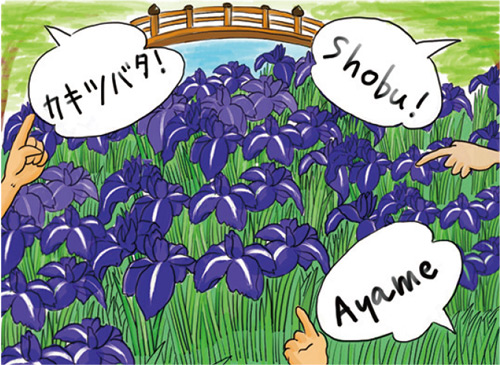 Channeling Hokusai as a guide to language and gardens